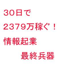 30日で2379万稼ぐ!情報起業最終兵器(PDF+DVD+冊子版)