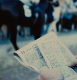 ◆完全均等投資で利率130%を安定キープ!◆ある盲点から見つけた競馬新聞の裏予想!「安定投資競馬マニュアル」