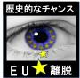 EU離脱で稼ぐ『E−OUT』 FX