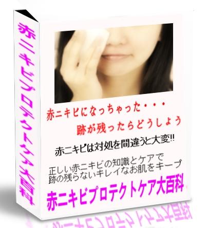 【再販権付き】赤ニキビプロテクトケア大百科