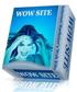 戦略的ウェブデザインパッケージ「WOW SITE」(再販権付き)