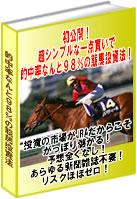【30名様限定価格販売開始】超シンプルな一点買いで勝率なんと98%の投資競馬術♪ 武田麗子の投資競馬で一億稼ぐ会