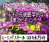 上野式生命素子プラーナ療法中級コース1-4/118000